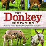 Donkey's As Companions; Book Review