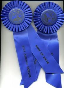 ribbons0314-small