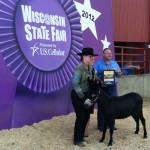 Grand Champion Halter Wisconsin State Fair 2012